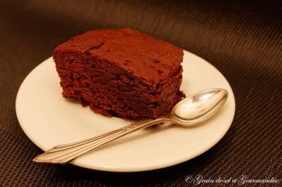 Gâteau au Cacao en Poudre