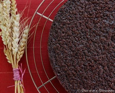 Moelleux Chocolat-Amandes
