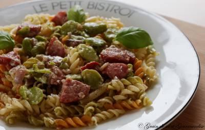 Torti aux fèves et saucisse de Morteau